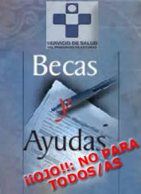 20150721113641-becasyayudas-actual.jpg