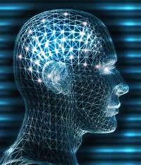 20100807121552-cerebro.jpg