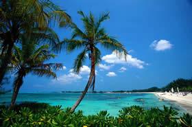 20100809112016-bahamas.jpg