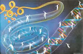 20110331082449-28.03.011-genetica.jpg