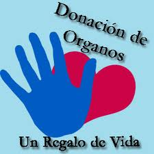 20110602073706-02.06.2011-organos.jpg