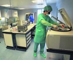 20111025074044-terapia-celular-huca.jpg
