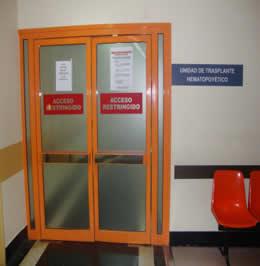 20120204112811-trasplante-hematopoyetico.jpg
