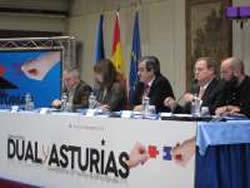 20120225103537-dual-asturias.jpg