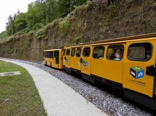 20130809120237-tren-ecomuseo.jpg