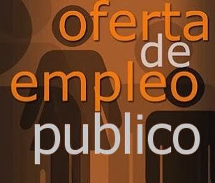 20131113135614-empleo-publico.jpg