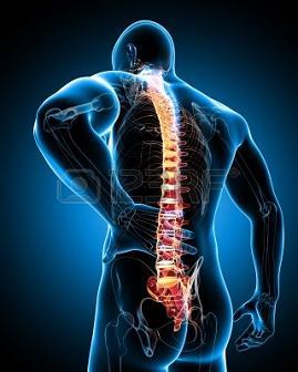 20140225135359-dolor-de-espalda.jpg