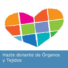 20150102104930-dona-organos.jpg